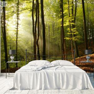پوستر دیواری جنگل DA-1497