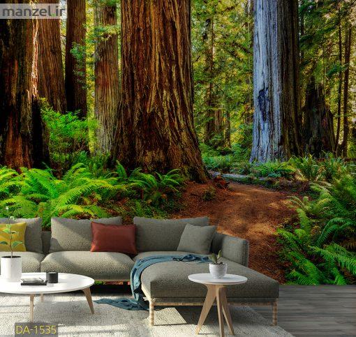 پوستر دیواری درختان جنگلی DA-1535