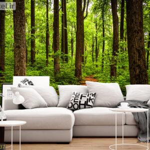 پوستر دیواری جنگل DA-1537