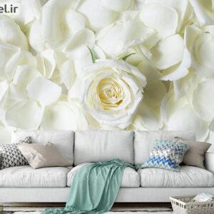 پوستر دیواری رز سفید DA-1647