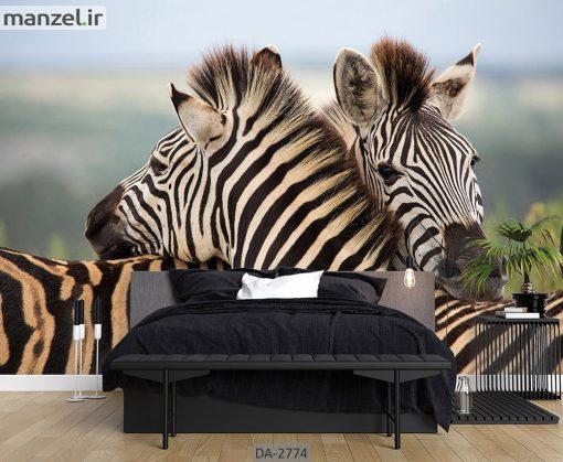 پوستر دیواری حیوانات طرح گورخر DA-2774