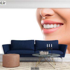 پوستر دیواری دندانپزشکی کد DA-4601