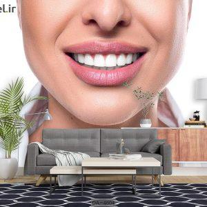 پوستر دیواری دندانپزشکی کد DA-4604