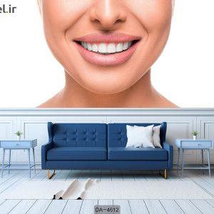 پوستر دیواری دندانپزشکی کد DA-4612