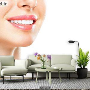 پوستر دیواری دندانپزشکی کد DA-4616